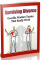 Surviving Divorce Give Away Rights Ebook
