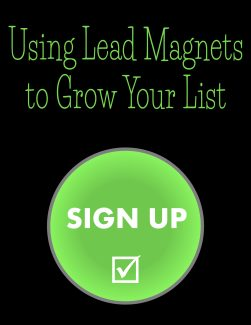 Using Lead Magnets To Grow Your List PLR Ebook