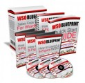 Wso Blueprint Resale Rights Ebook With Audio & Video