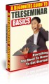 A Beginners Guide To Teleseminar Basics PLR Ebook