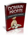 Domain Profits Plr Ebook