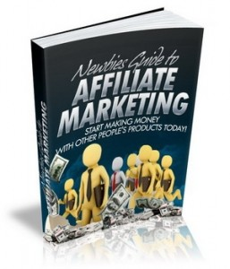 Newbies Guide To Affiliate Marketing Mrr Ebook