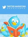 Twitter Marketing Excellence Personal Use Ebook