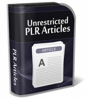 Understanding And Supporting Customers PLR Article
