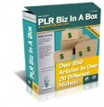 Plr Biz In A Box MRR Article