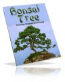 Bonsai Tree PLR Ebook