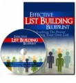 Effective List Building Blueprint Personal Use Video