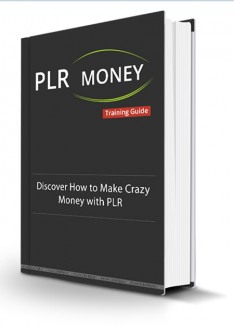 Plr Money Made Easy Personal Use Ebook With Audio & Video