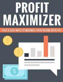 Profit Maximizer PLR Ebook
