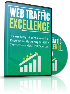 Web Traffic Excellence MRR Video