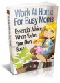 Work At Home For Busy Moms MRR Ebook With Video