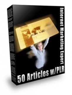 Internet Marketing Expert PLR Article