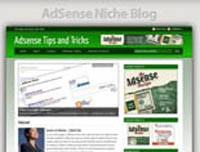 Adsense Niche Blog Personal Use Template With Video