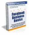 Facebook Business Basics Plr Autoresponder Messages