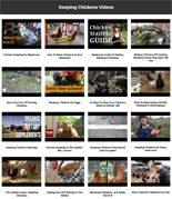 Keeping Chickens Instant Mobile Video Site MRR Software