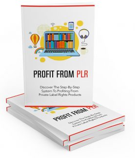 Profit From Plr MRR Ebook