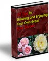 101 Tips For Growing Your Own Great Rose Garden Resale ...
