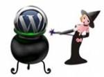 WordPress Plugin Magic Plr Video