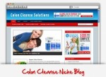 Colon Cleanse Niche Blog Personal Use Template