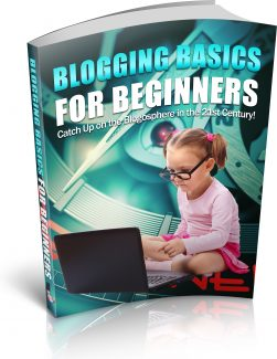 Blogging Basics For Beginners PLR Ebook