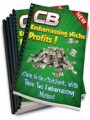 Embarrassing Niche Profits Resale Rights Ebook With Video
