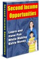 Second Income Opportunities Give Away Rights Ebook