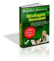 Credit Repair Strategies Revealed V2 PLR Ebook