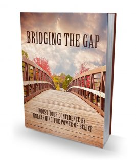 Bridging The Gap MRR Ebook