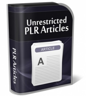 Cleaning Up Your Credit PLR Article