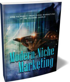 Modern Niche Marketing MRR Ebook
