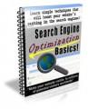 Search Engine Optimization Basics Newsletter PLR ...