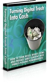 Turning Digital Trash Into Cash PLR Ebook