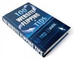 100 Website Flipping Tips PLR Ebook