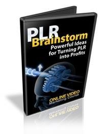 Plr Brainstorm PLR Video