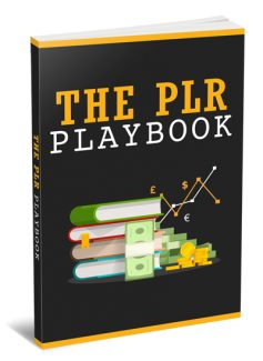The Plr Playbook Personal Use Ebook With Audio & Video