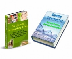 Moving Sale 2 Plr Ebooks – Pack 4 PLR Ebook