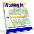 Working At Home For 21st Century Moms Mrr Ebook