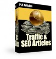 Traffic & SEO Articles Plr Article