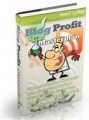 Blog Profit Masterplan Personal Use Ebook