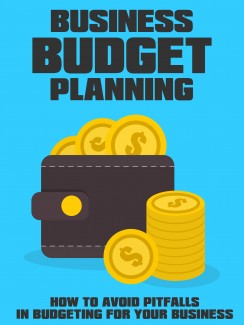 Business Budget Planning Give Away Rights Ebook