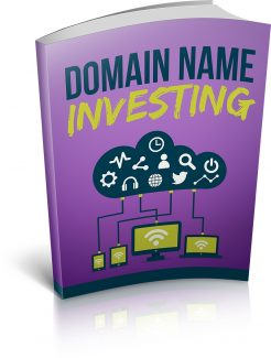 Domain Name Investing MRR Ebook