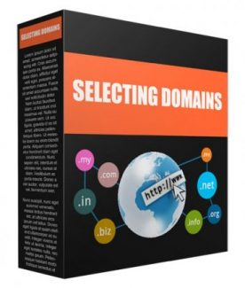Selecting Domains PLR Audio