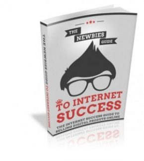 The Newbies Guide To Internet Success MRR Ebook