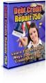 Debt Credit Repair 750 PLR Ebook