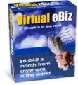 Virtual Ebiz Resale Rights Ebook