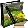 The Allergy Relief Source Book Plr Ebook