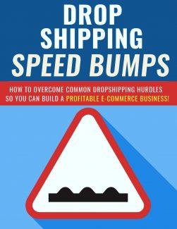 Dropshipping Speed Bumps PLR Ebook
