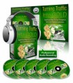 Turning Traffic Into Gold PLR Ebook With Audio
