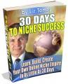 30 Days To Niche Success MRR Ebook