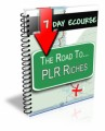 7 Day Ecourse : The Road To Plr Riches Personal Use ...